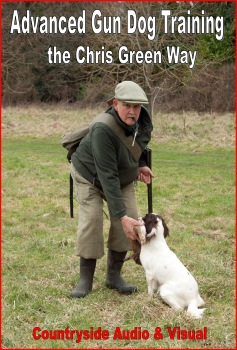 Advanced Gun Dog Training