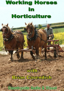 Working Horses in Horticulture