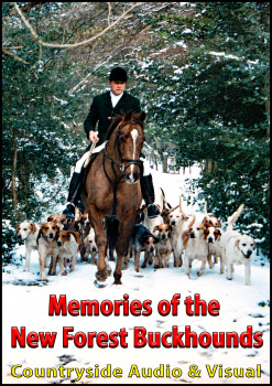 Memories of the New Forest Buckhounds