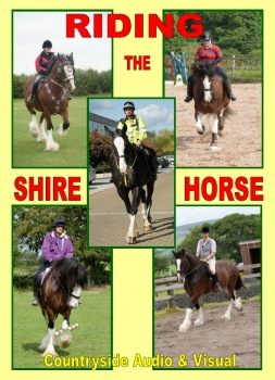 Riding the Shire Horse